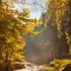 Sun rays in Bohemia