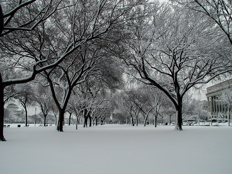 Snow on the DC Mall