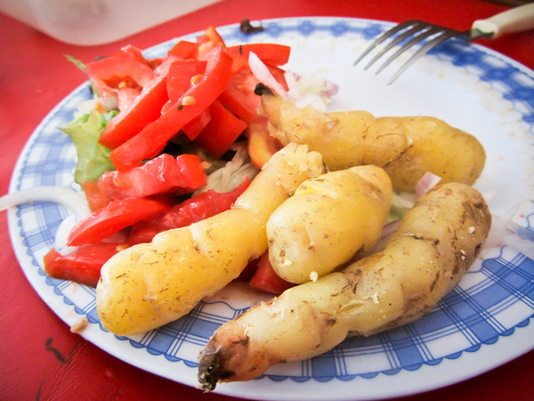 A guide to the food and drinks of bolivia the travel chica potatoes forumfinder Gallery
