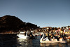 You can paddle along on a swan on Titicaca lake.