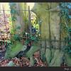 Bomen en hek, begraafplaats Bossche Poort, Zaltbommel