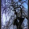 Treur-es, begraafplaats Bossche Poort, Zaltbommel