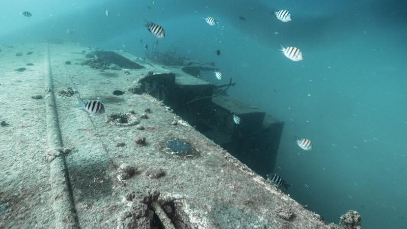 Bonaire 2018 (24 of 126).jpg