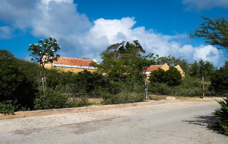 Bonaire 2018 (108 of 126).jpg