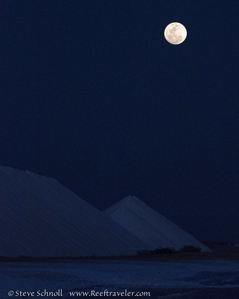 Moonrise Over the Salt Mountains