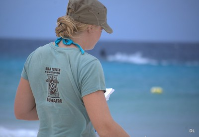 Sea Turtle Conservation Bonaire (STCB)