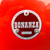Bonanza BC1000 -  (35)