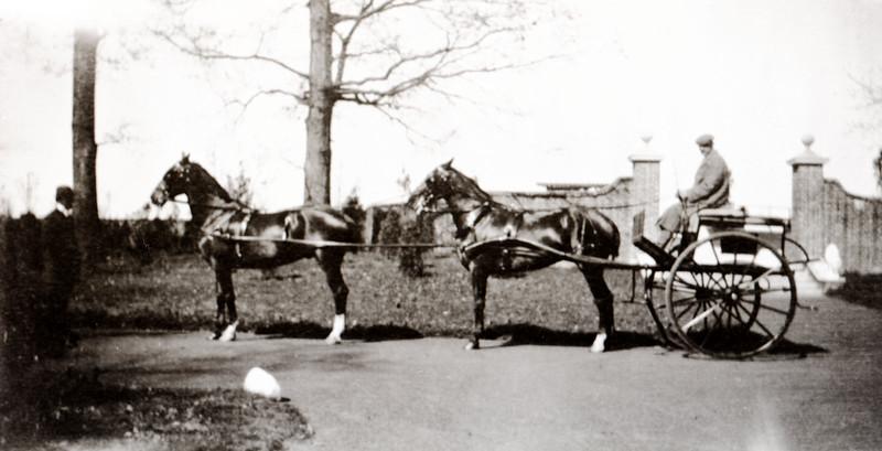 Frank Bond Driving a Tandem, Willowbrook 1908