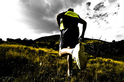 No Trail Running