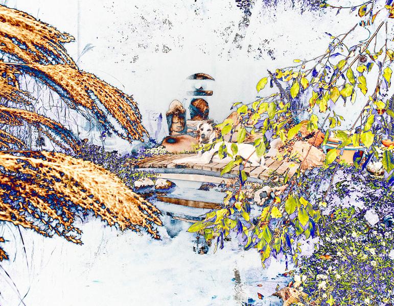 DH3_3788 solarize crop