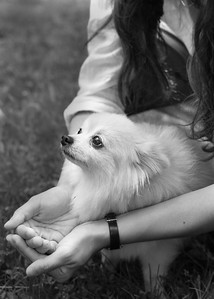 DHP_butters_knox_0564_RS_bw_a