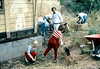 Volunteers pick up old shingles off ground, 6/1982. acc2005.001.0237
