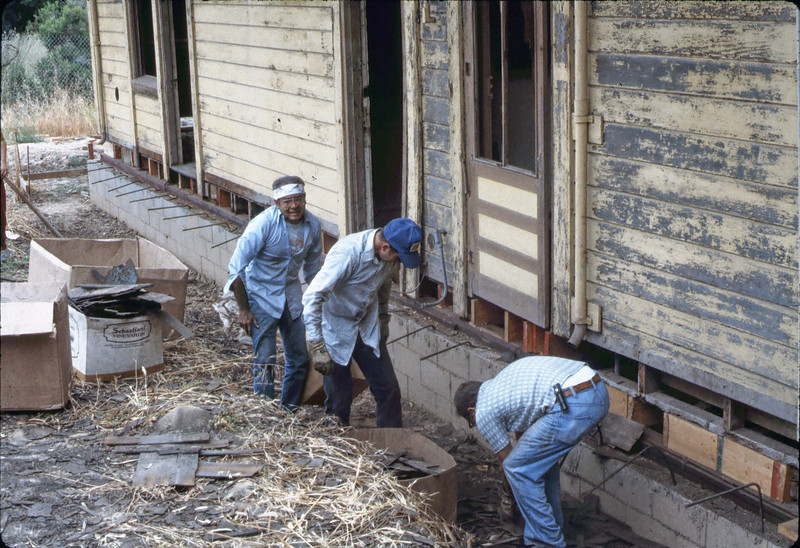 Volunteers pick up old shingles off ground, 6/1982. acc2005.001.0241