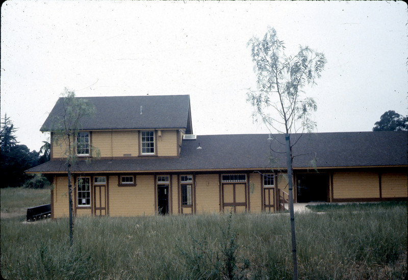 Pepper trees planted as screen between Goleta Depot and Stow House, 6/1983.  acc2005.001.0366