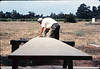 Ralph Moore building new express counter for Freight Office, 7/1983 or 8/1983.. acc2005.001.0385