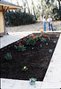 Planting flowers in front of Chamber of Commerce office (Phyllis Olsen and Christine Negus, 7/1983. acc2005.001.0381