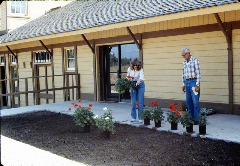 Phyllis Olsen and George Adams planting geraniums in planter in front of Chamber of Commerce office, 7/1983. acc2005.001.0378