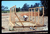 Gene Allen and framing for miniature-train shed, 6/1990. acc2005.001.1342