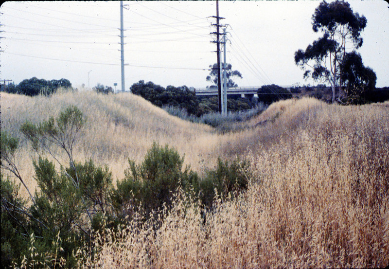 1887 Southern Pacific right-of-way cut, west of Glen Annie Road, 6/1988 acc2005.001.0987
