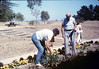 Anna Dato and George Adams tend to the flower bed, 6/1987 acc2005.001.0801