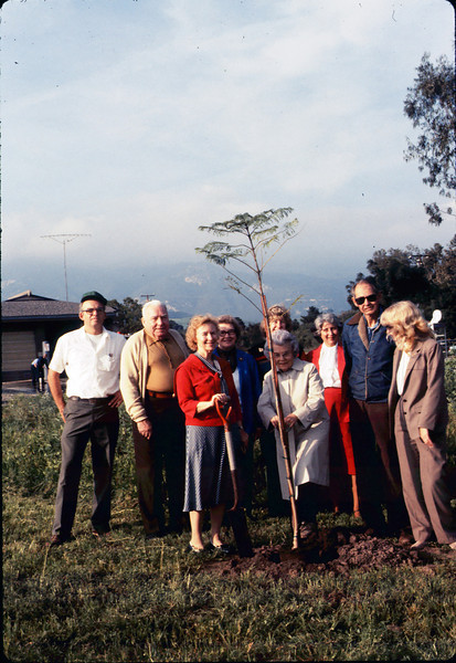 Arbor Day tree planting (Little Gardens Club), 3/1986. acc2005.001.0548