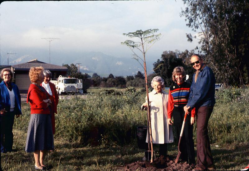 Arbor Day tree planting (Little Gardens Club), 3/1986. acc2005.001.0549