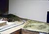Model-railroad exhibit, 3/1986 acc2005.001.0568