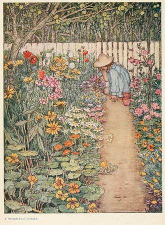Winifred Cayley-Robinson