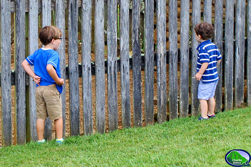 These kids are curious about what is behind the fence.