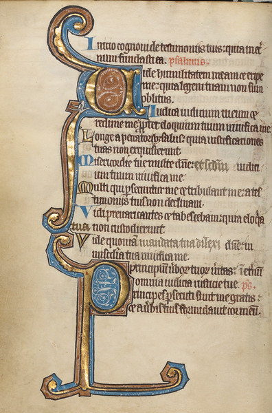 Decorated Initial V; Decorated Initial P