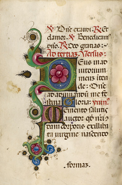 Decorated Initial D; Decorated Initial M