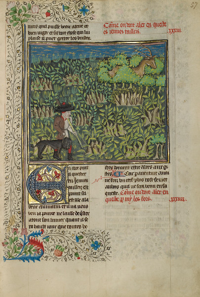 A Hunter and a Dog Tracking in a Copse
