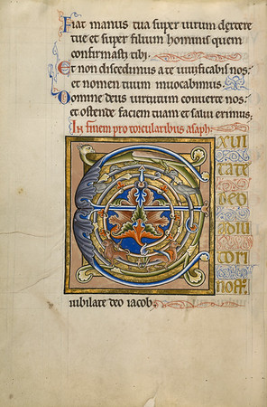 Decorated Initial E