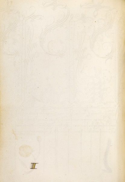 Trompe l'Oeil Stem of a Globeflower