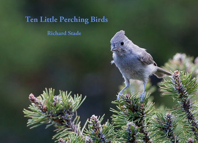 NEW Limited Edition of 20 Miniature books 6.5 in x 4.75 in. Printed on Hahnemühle produced fine art rag paper Miniature Price of $12 S/H included in U.S. 12 of 20 Available   Juniper Titmouse Baeolophus ridgwayi