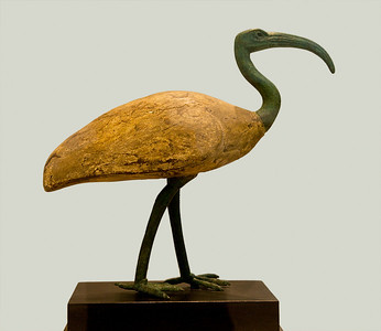 Egyptian Ibis Bronze and Wood 26-30th Dynasties 664-332 BCE  Museum of Fine Art Houston