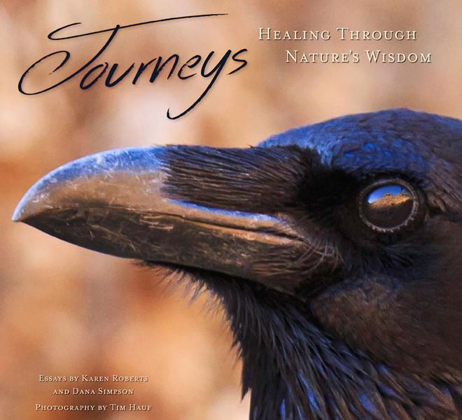 Journeys:  Healing Through Nature's Wisdom