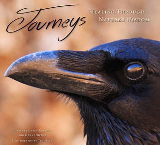 Journeys:  Healing Through Nature's Wisdom