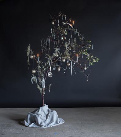 Silver Tree - 1/28/14