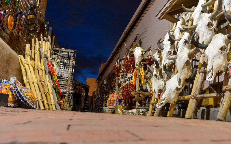 Hmmm, what to do? There could be food here but those cow skulls in Santa Fe, NM give Elliott the heebie-jeebies.