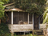 Shotgun Shack with Cat, Sarasota, FL 2003