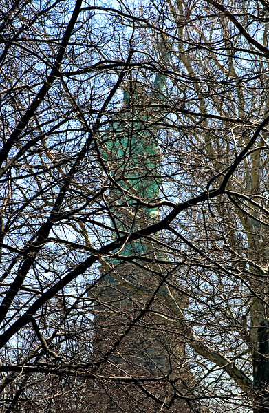 Statue of Liberty Through Spring Branches, New York, NY 2005