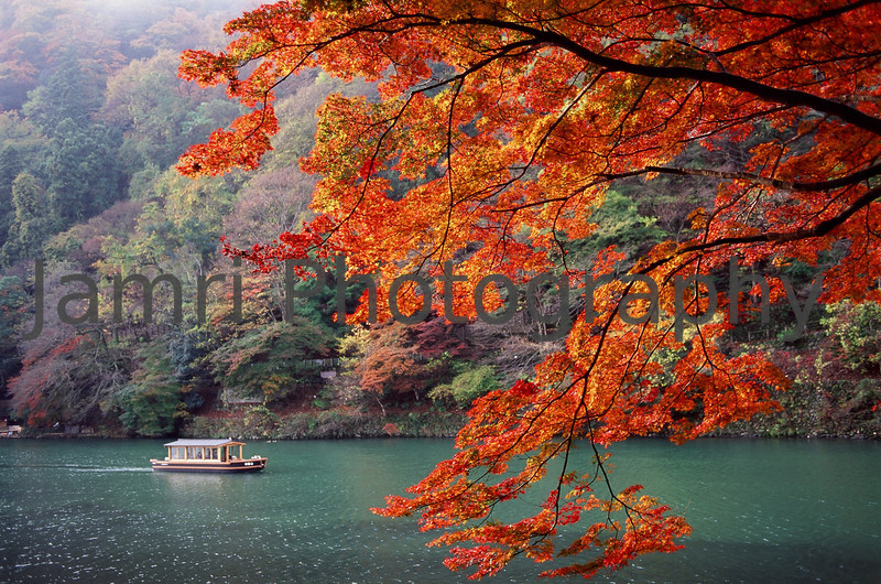 November - A boat and Momiji (Japanese Maple).<br /> Note Film Shot: Nikon F80 + 35mm f/2 + Fujichrome Velvia 50