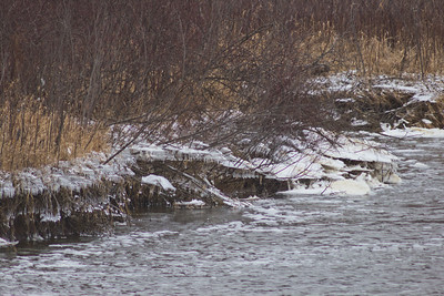 Soft Cloudy Day at Stepping Stone Falls in Flint Michigan Photograph 22