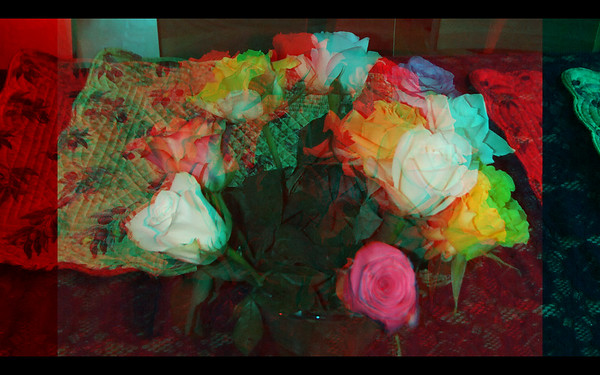 Photographs of Flowers in Anaglyph for Ebook