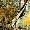 This crude Tipi was one of many I lived in from the summer of 1980 to the summer of 2001, and was thrown together in the Fall of 1986 using old chestnut bark and discarded tents.  It even had a dumpster-found woodstove.