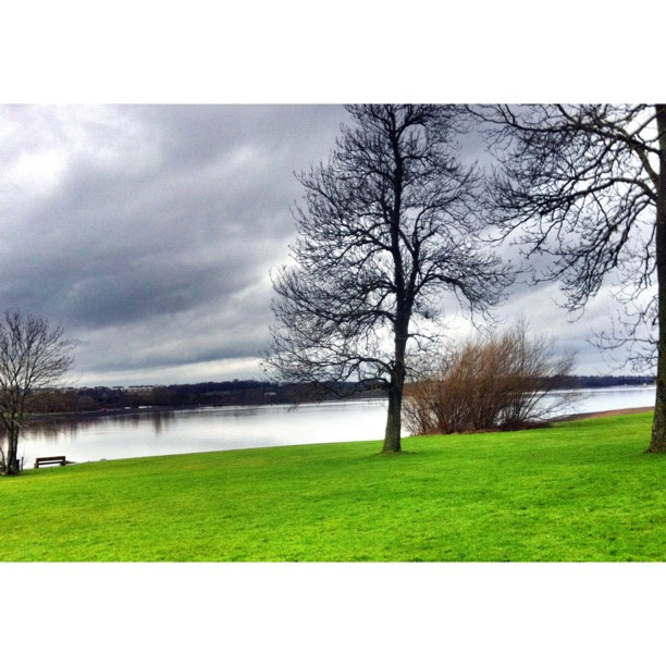 Strathclyde Loch #landscape #scotland #motherwell