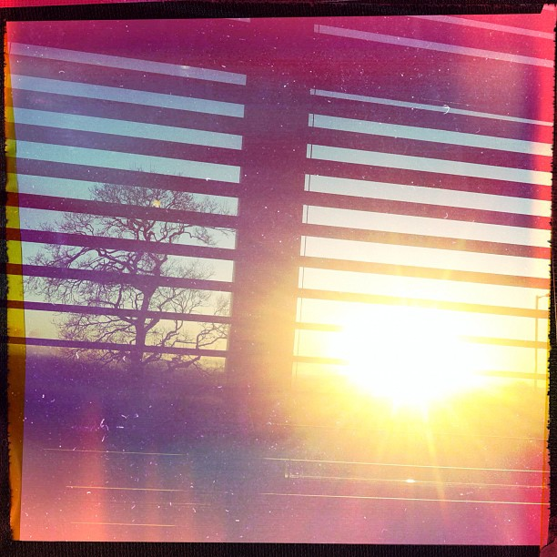 #Winter #sun teasing me as I #work in the #office