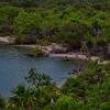 ~ Mayan Jungle ~
