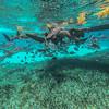 ~ Aquatic Plunge ~